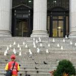 Bird Columns
